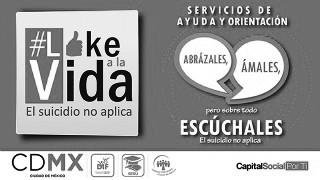 Like a la vida.jpg
